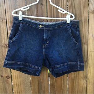 Levi's 545 Jean shorts
